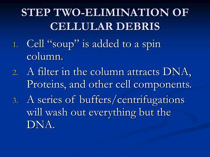 STEP TWO-ELIMINATION OF CELLULAR DEBRIS