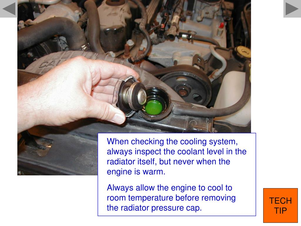 When checking the cooling system, always inspect the coolant level in the radiator itself, but never when the engine is warm.
