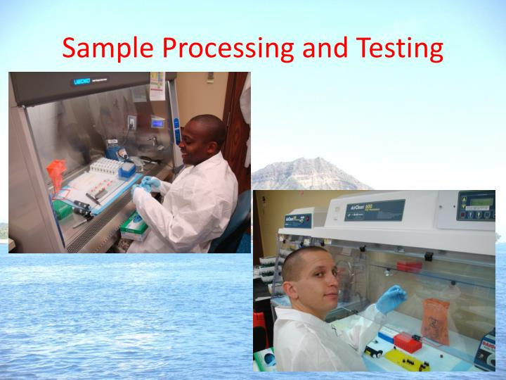 Sample Processing and Testing