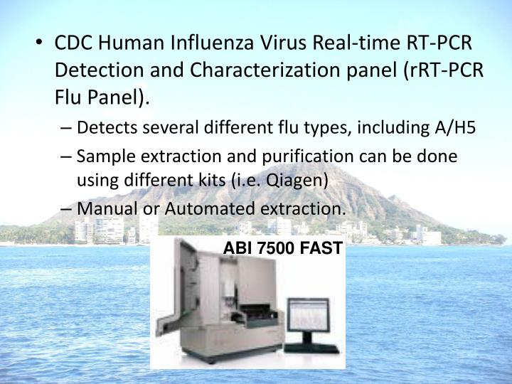 CDC Human Influenza Virus Real-time RT-PCR Detection and Characterization panel (rRT-PCR Flu Panel).