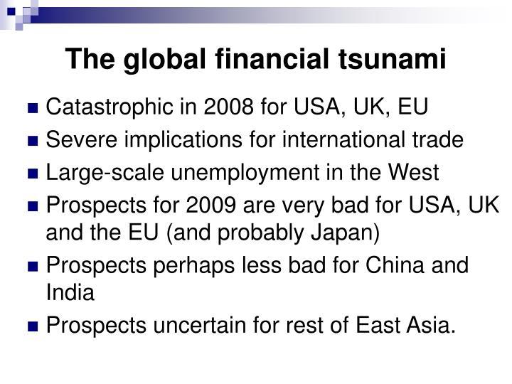 The global financial tsunami