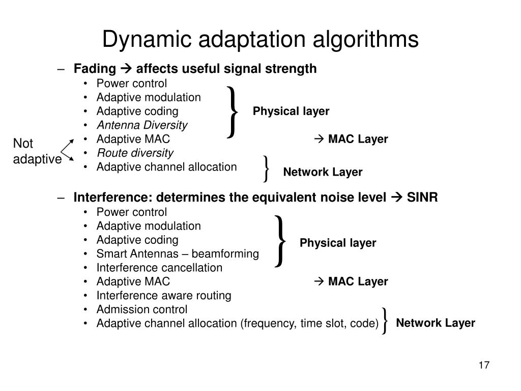 Dynamic adaptation algorithms