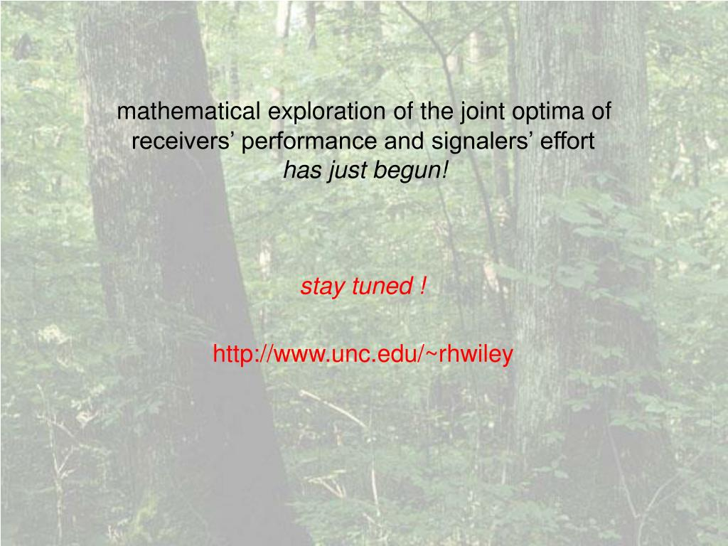 mathematical exploration of the joint optima of