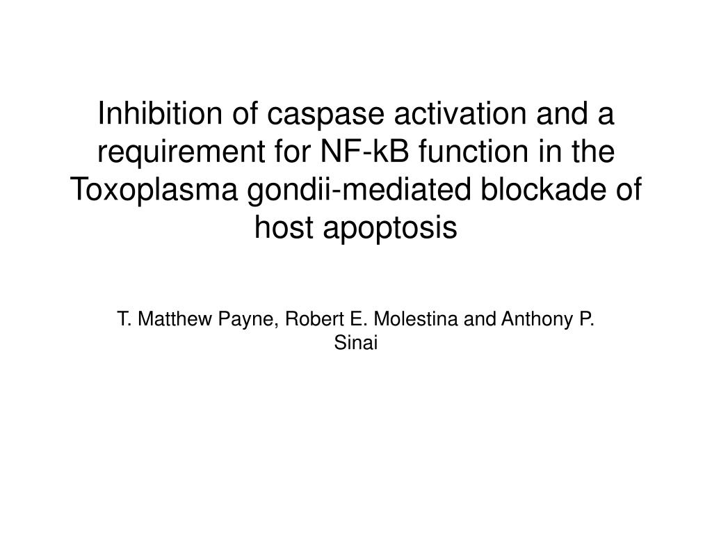 Inhibition of caspase activation and a requirement for NF-kB function in the Toxoplasma gondii-mediated blockade of host apoptosis