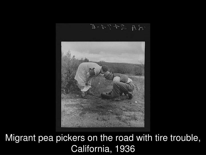 Migrant pea pickers on the road with tire trouble, California, 1936