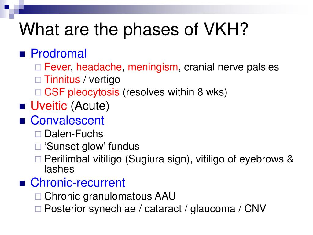 What are the phases of VKH?