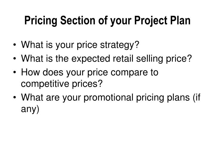 Pricing Section of your Project Plan
