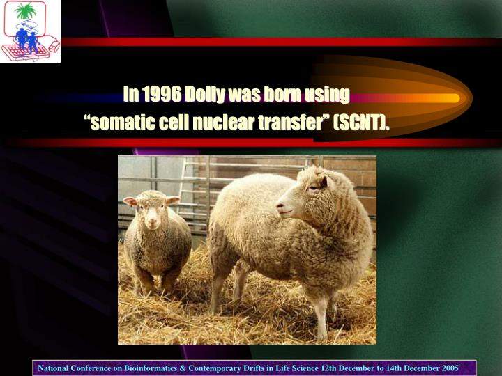 In 1996 Dolly was born using