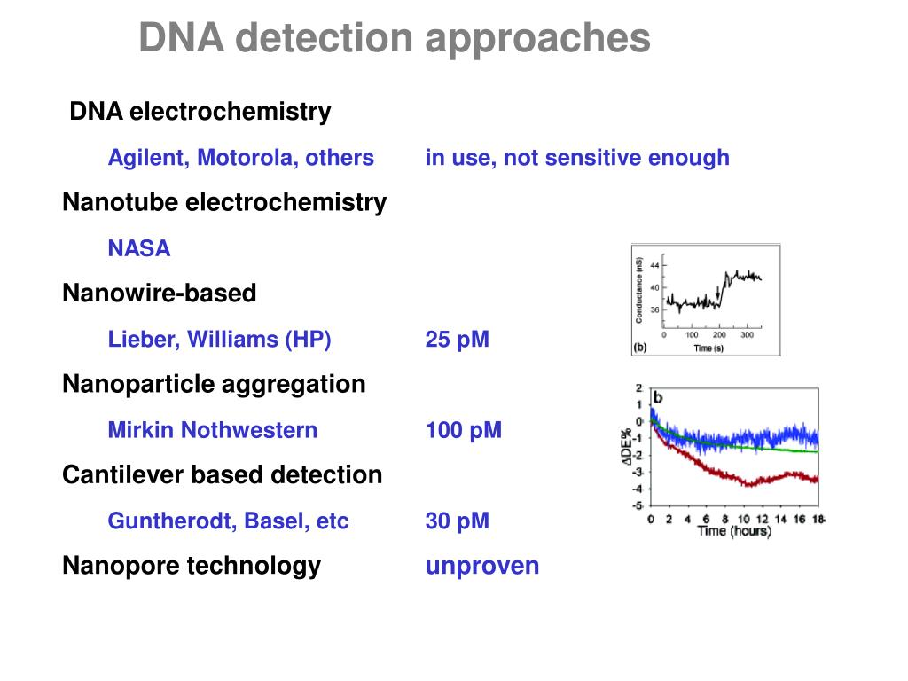 DNA detection approaches