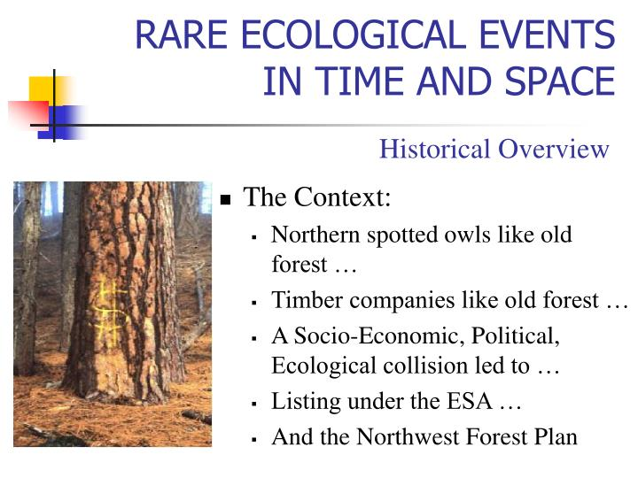 Rare ecological events in time and space3