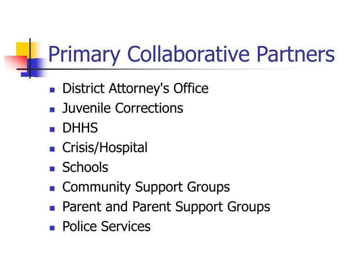 Primary Collaborative Partners