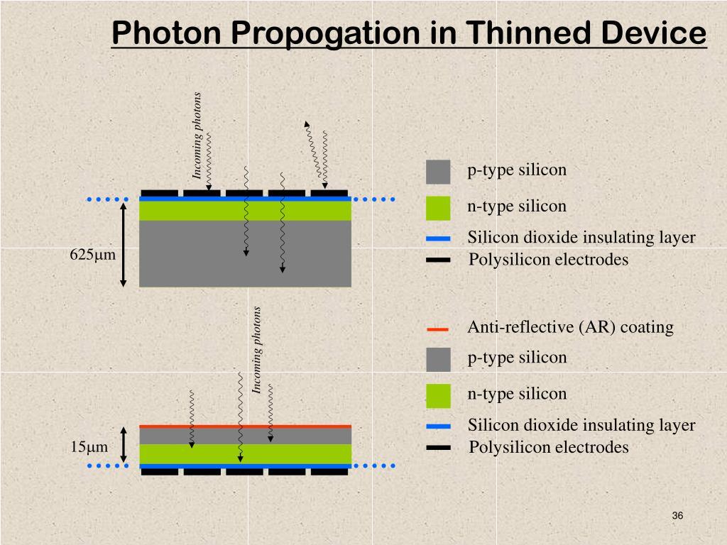 Photon Propogation in Thinned Device