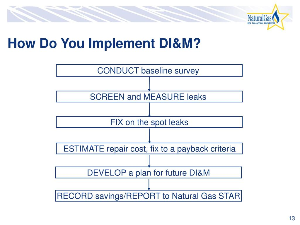 How Do You Implement DI&M?