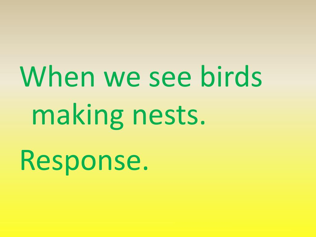 When we see birds making nests.