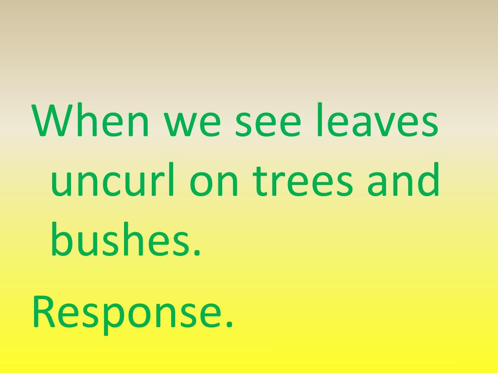 When we see leaves uncurl on trees and bushes.