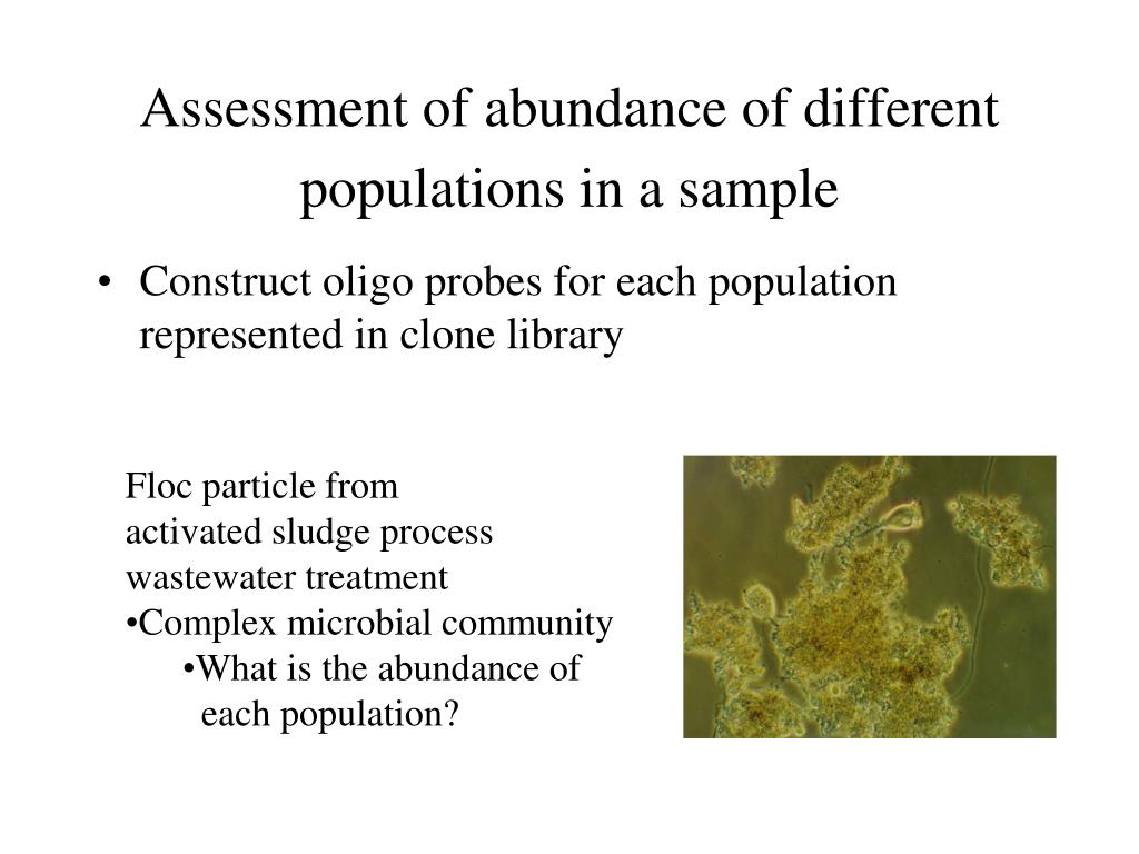Assessment of abundance of different populations in a sample