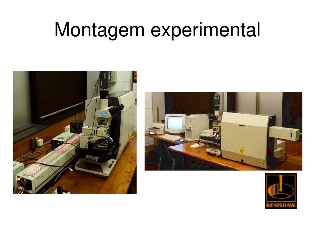 Montagem experimental