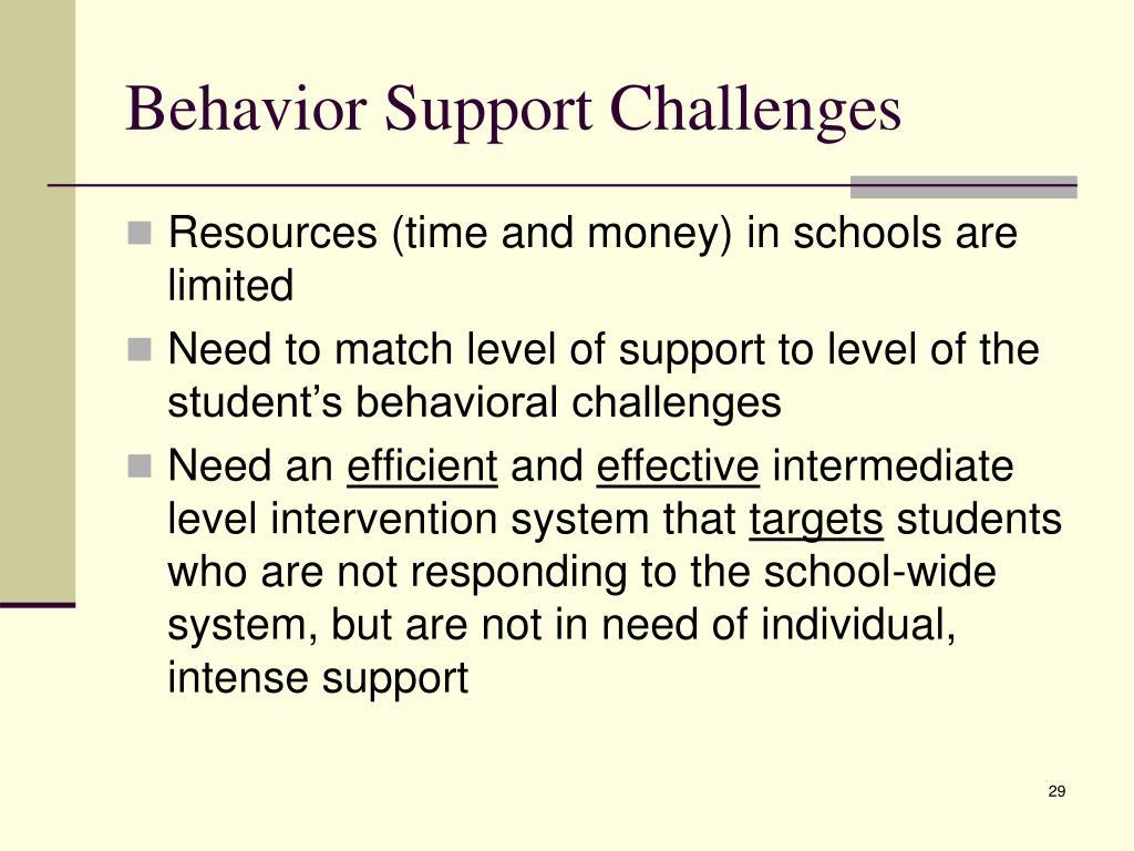 Behavior Support Challenges