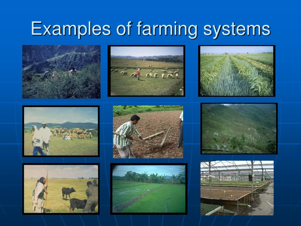 Examples of farming systems