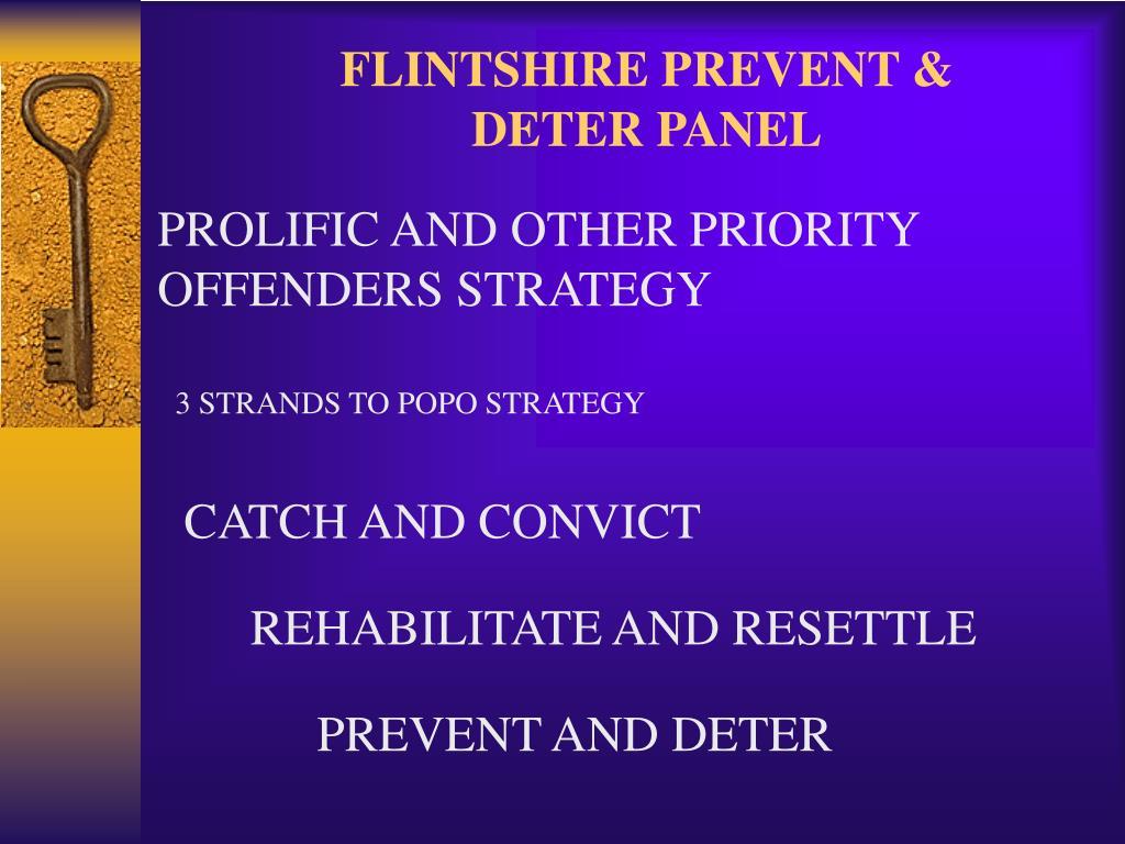 FLINTSHIRE PREVENT & DETER PANEL
