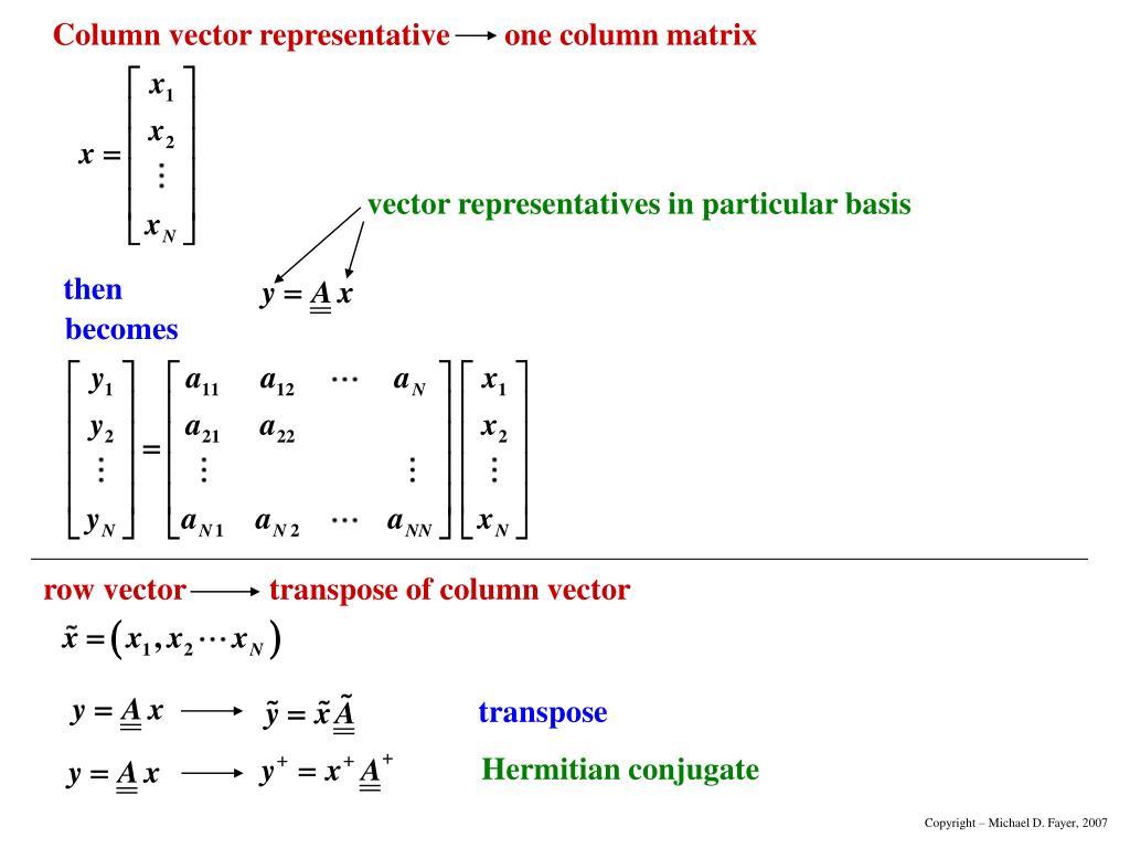 vector representatives in particular basis