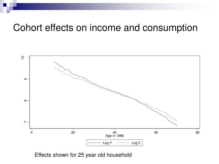Cohort effects on income and consumption