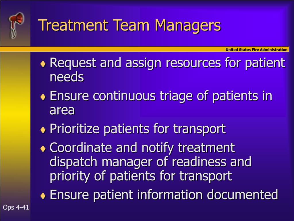 Treatment Team Managers