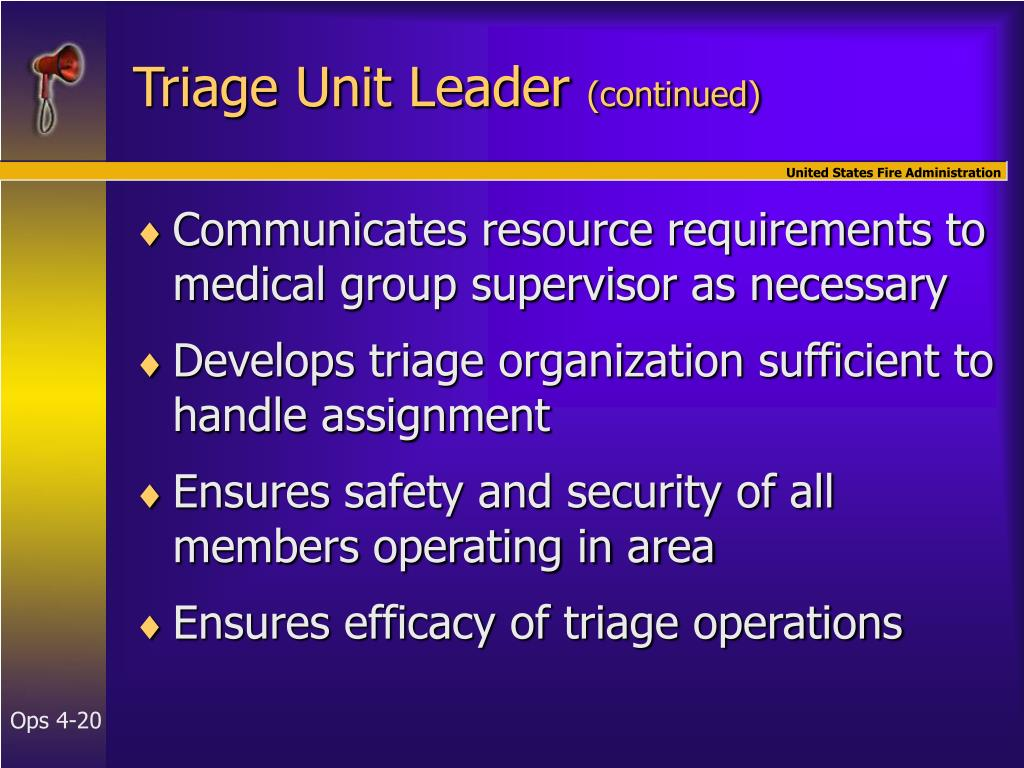 Triage Unit Leader
