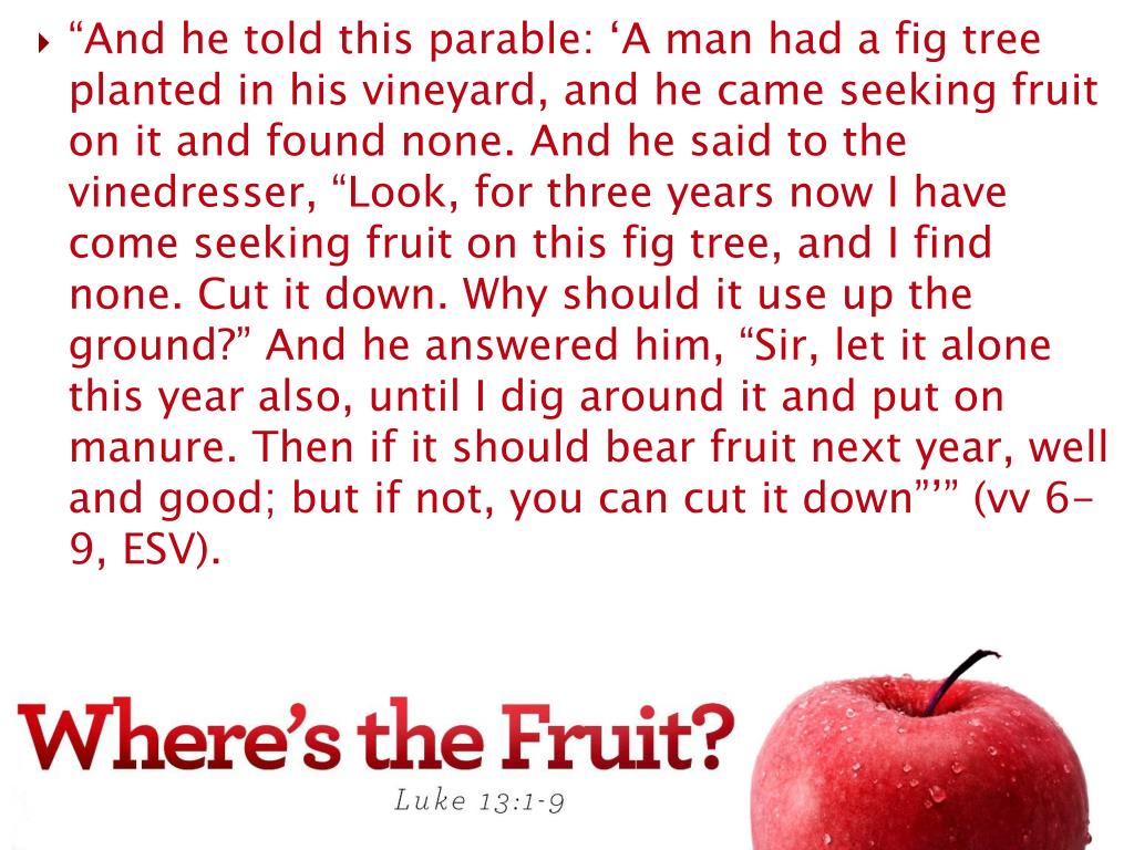 """And he told this parable: 'A man had a fig tree planted in his vineyard, and he came seeking fruit on it and found none. And he said to the vinedresser, ""Look, for three years now I have come seeking fruit on this fig tree, and I find none. Cut it down. Why should it use up the ground?"" And he answered him, ""Sir, let it alone this year also, until I dig around it and put on manure. Then if it should bear fruit next year, well and good; but if not, you can cut it down""'"" (vv 6-9, ESV)."
