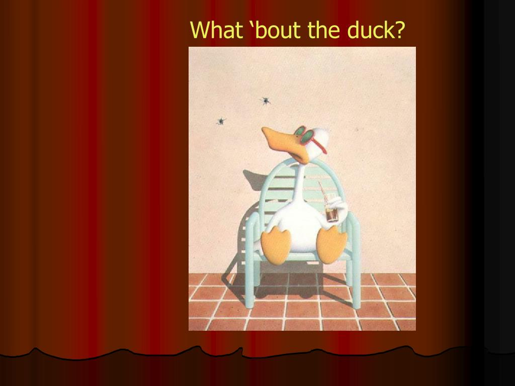 What 'bout the duck?