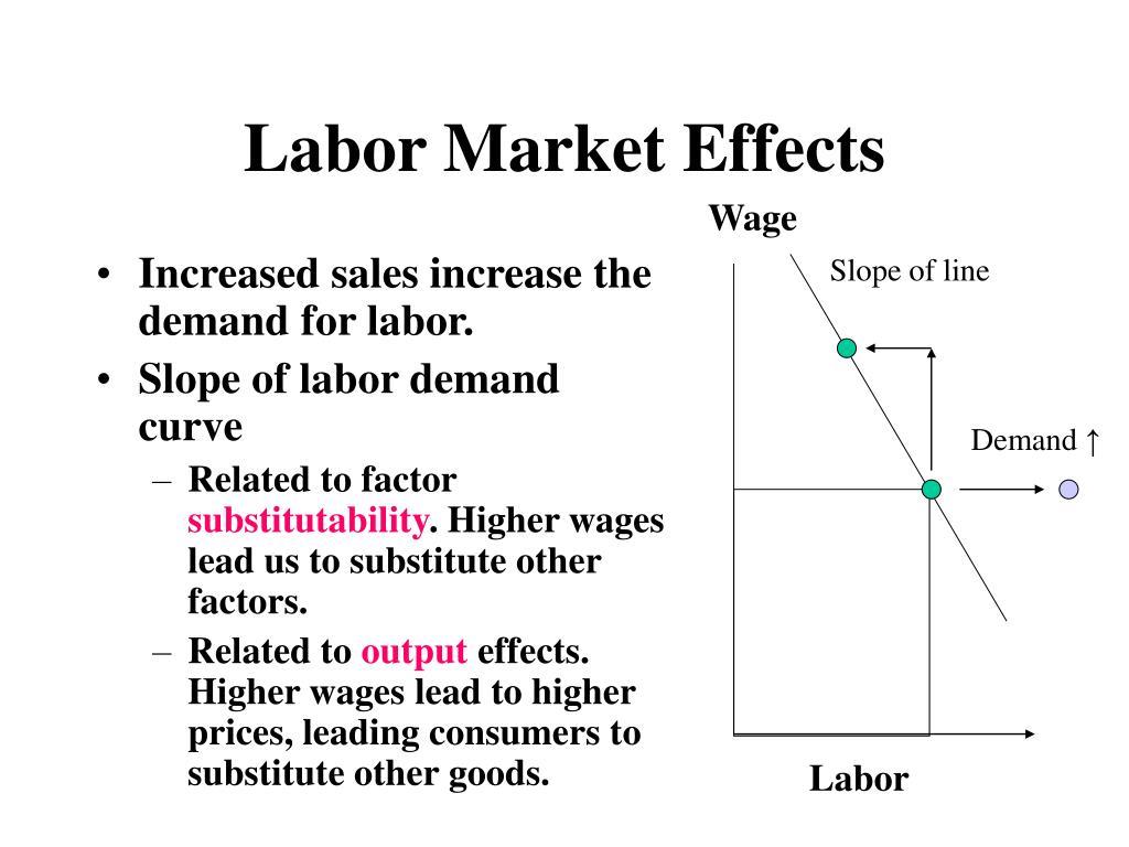 Labor Market Effects