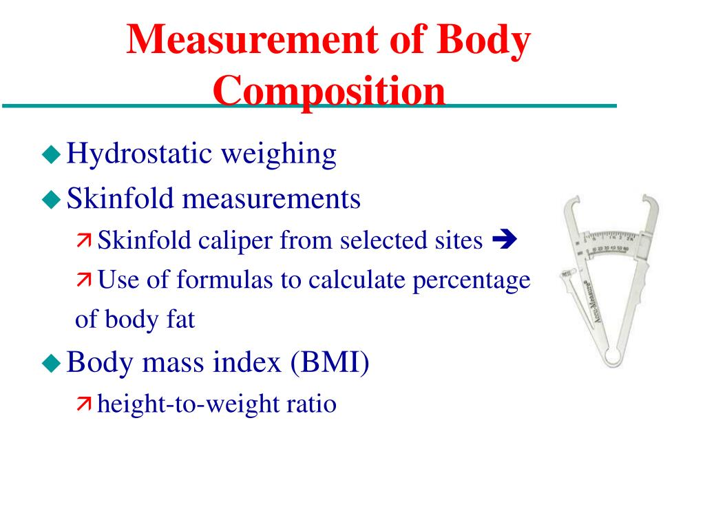 Measurement of Body Composition