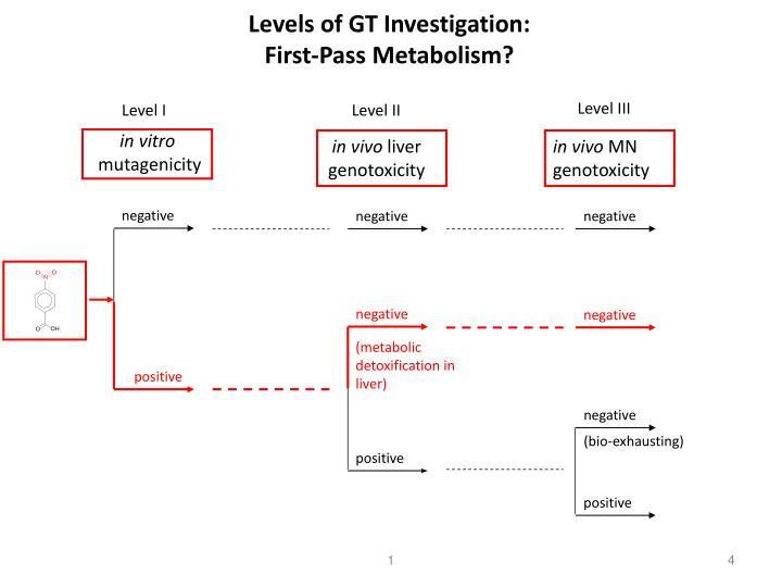 Levels of GT Investigation:
