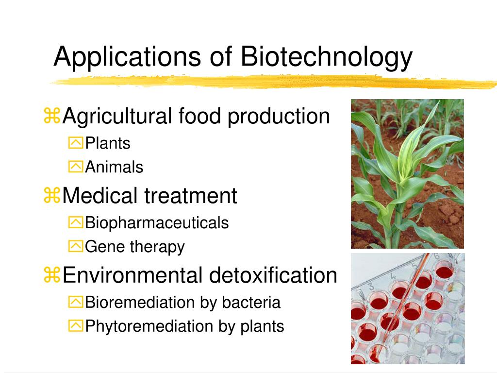 Applications of Biotechnology