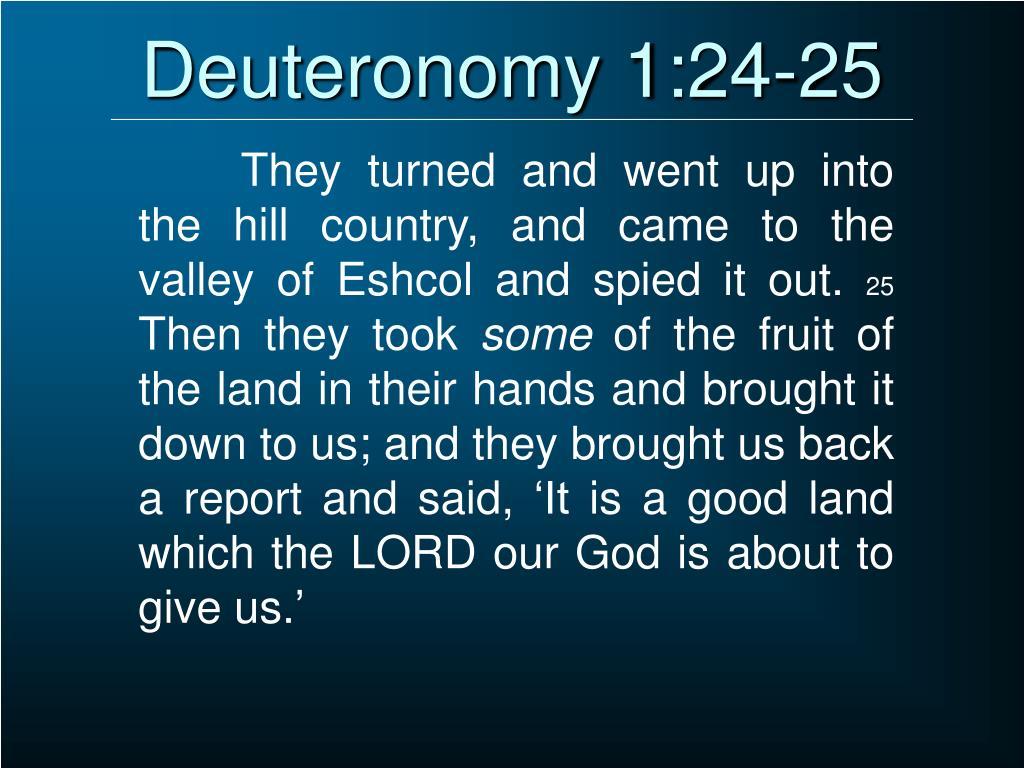 Deuteronomy 1:24-25
