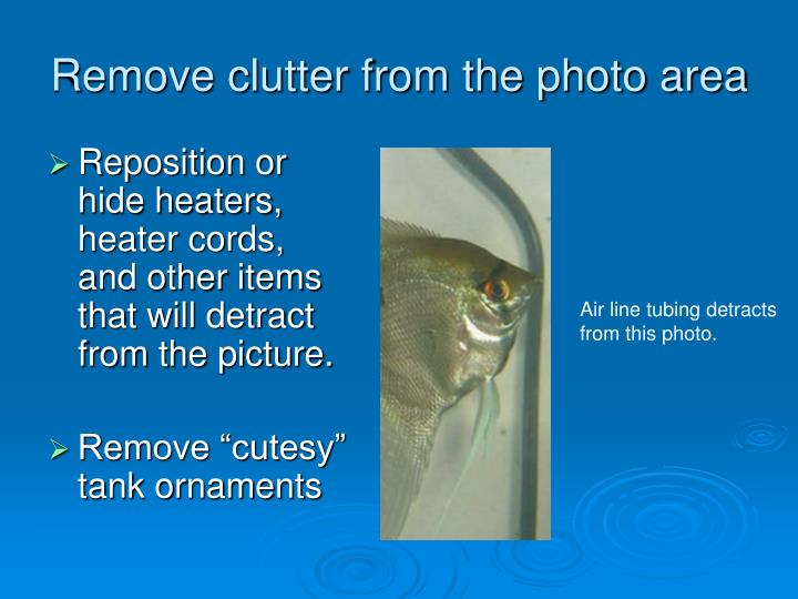 Remove clutter from the photo area