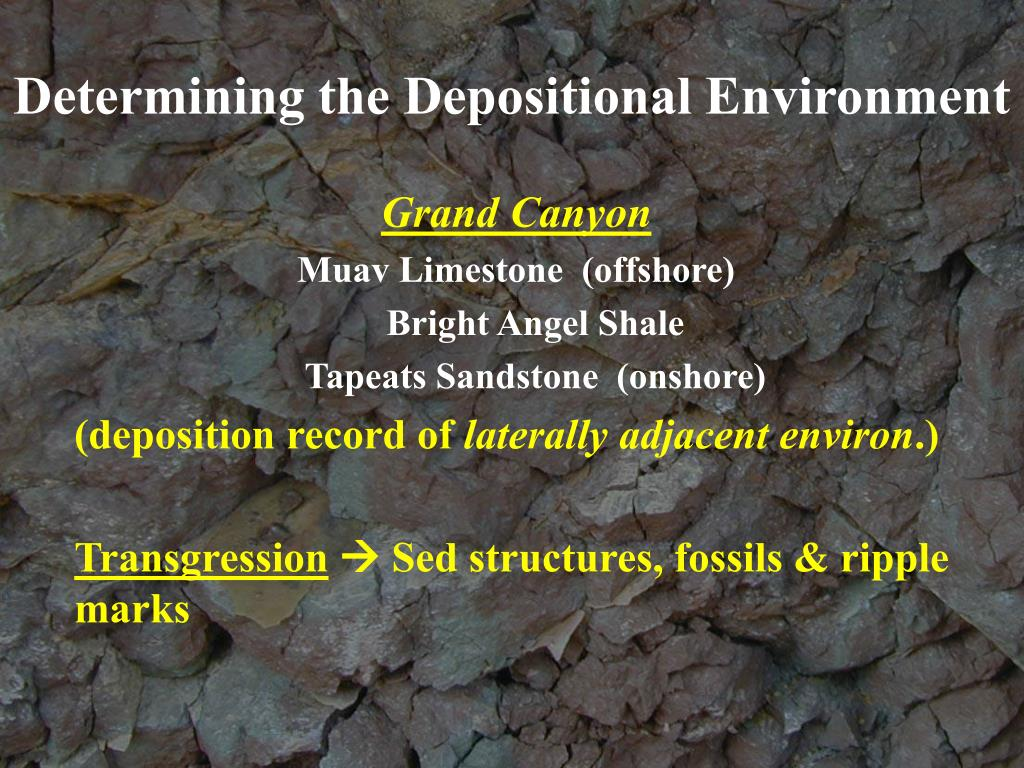 Determining the Depositional Environment