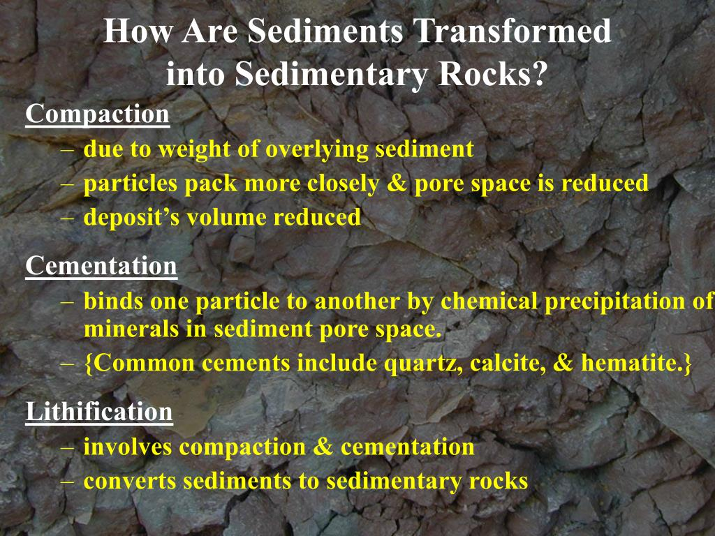 How Are Sediments Transformed           into Sedimentary Rocks?