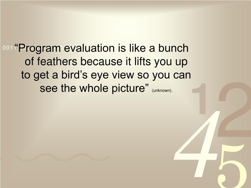 """Program evaluation is like a bunch of feathers because it lifts you up to get a bird's eye view so you can see the whole picture"""
