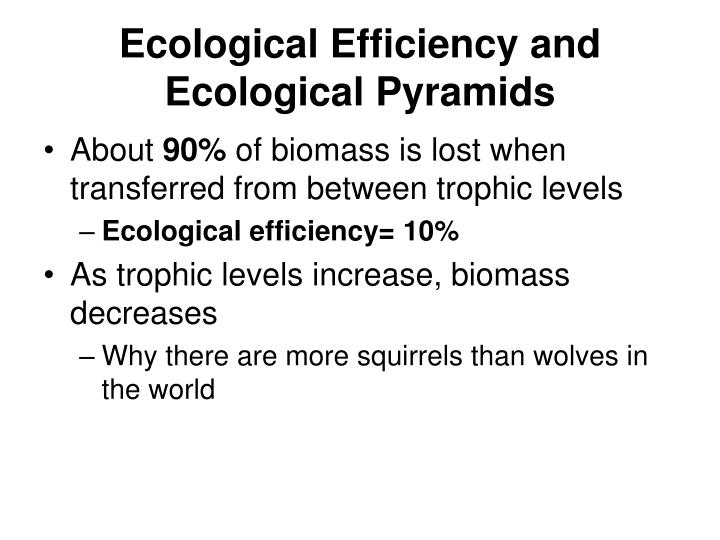 Ecological Efficiency and Ecological Pyramids