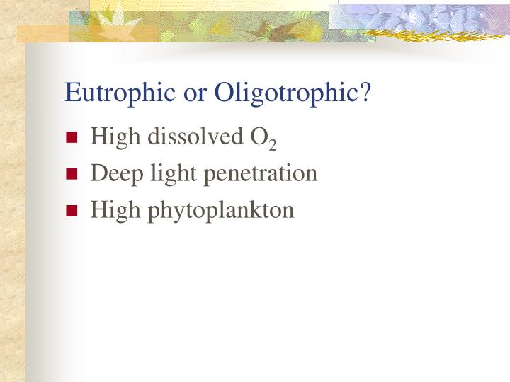 Eutrophic or Oligotrophic?