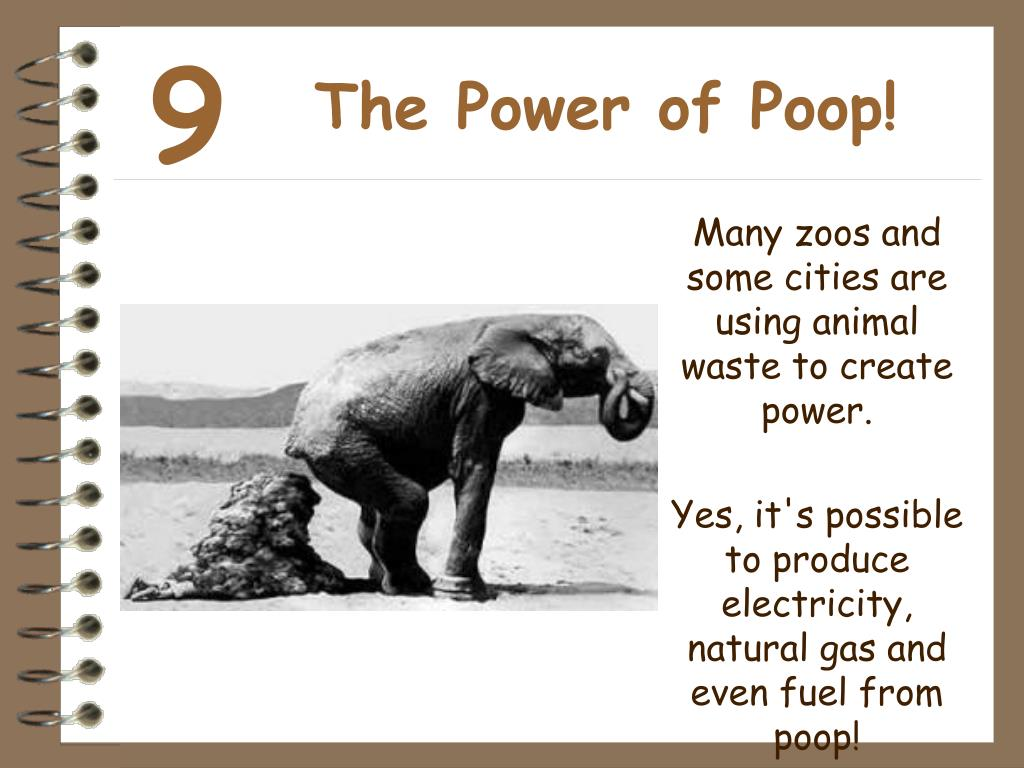 The Power of Poop!