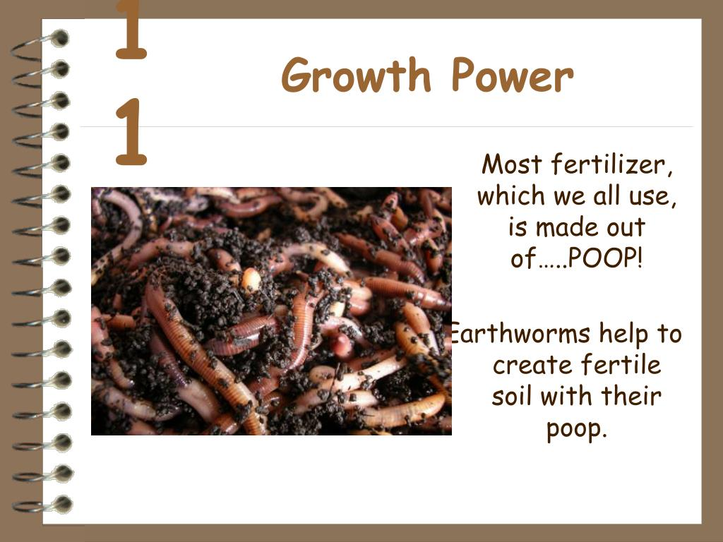 Growth Power