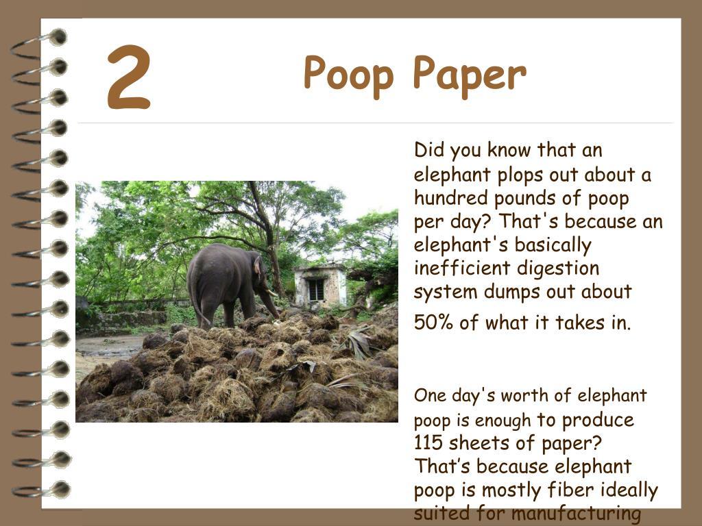 Poop Paper