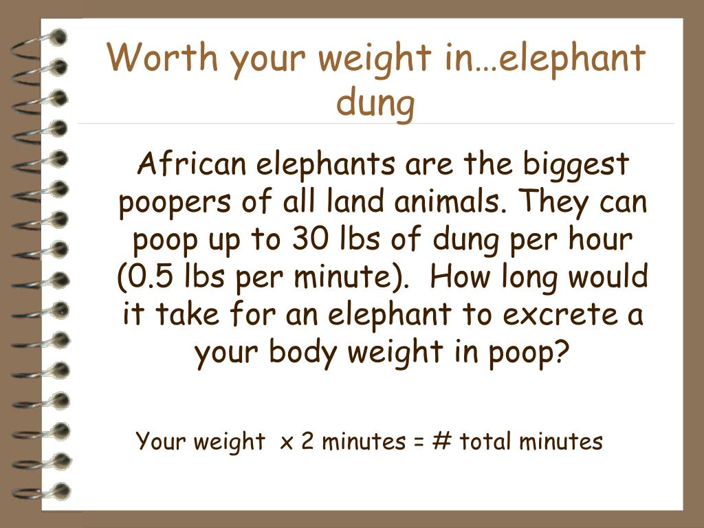Worth your weight in…elephant dung