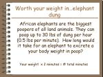 worth your weight in elephant dung
