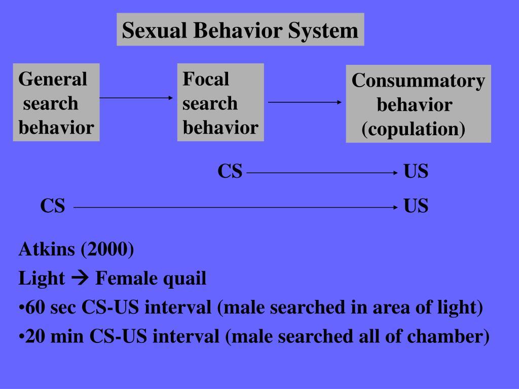 Sexual Behavior System