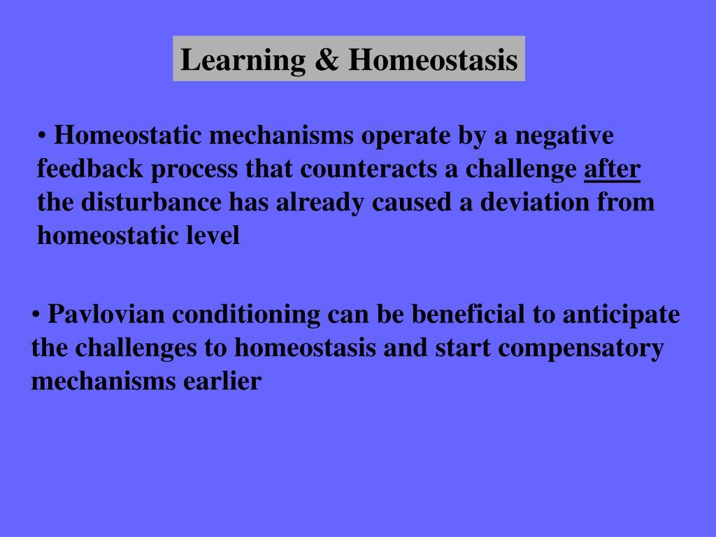 Learning & Homeostasis
