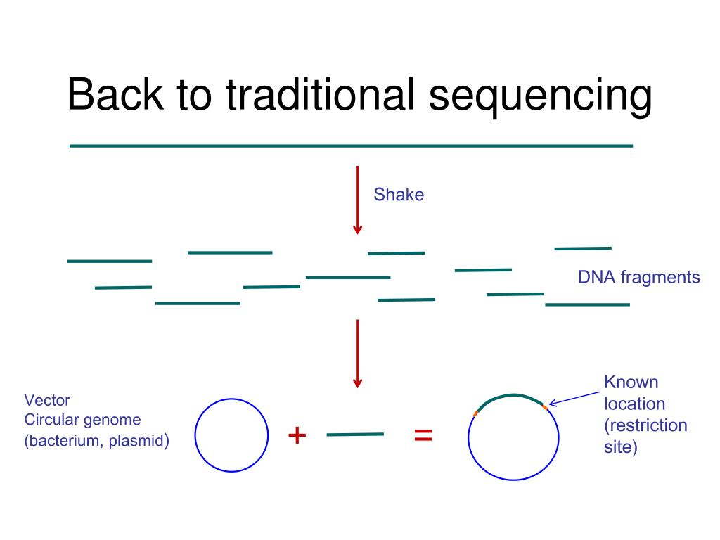 Back to traditional sequencing