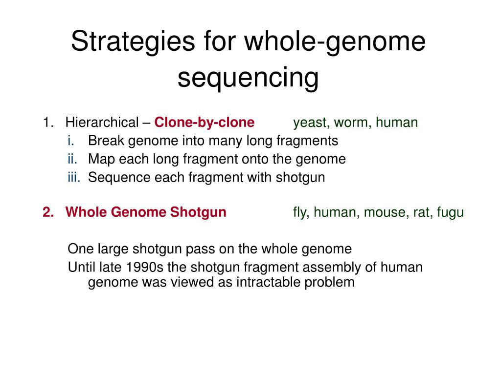 Strategies for whole-genome sequencing